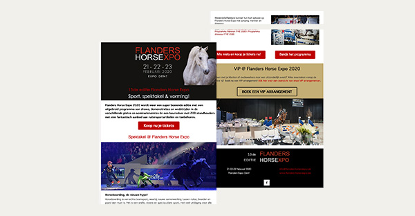 Programmatie & event marketing  Flanders Horse Expo