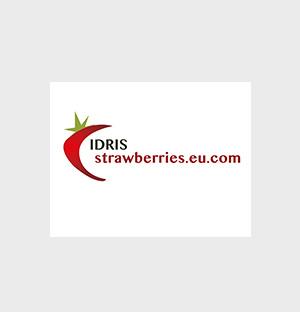 Idris - logo en huisstijl